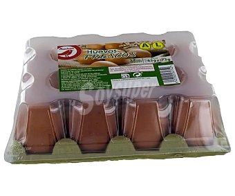 Producto Alcampo Huevos frescos de categoria A y clase L 12 uds
