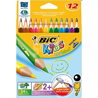 BIC Kids Estuche con 12 lapiceros de colores Evolution Triangle