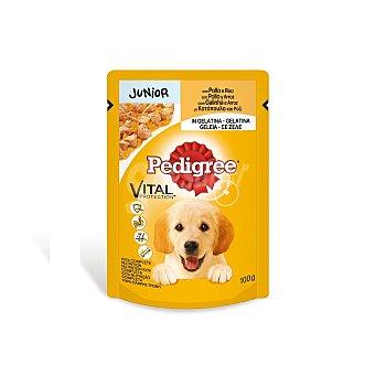 Pedigree Comida húmeda para perros cachorros Junior pollo y arroz Bolsa 100 g