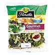 Ensalada gourmet otoño-invierno  Bolsa 150 g Florette