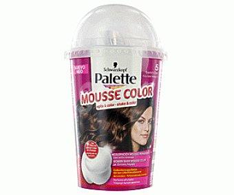Palette Schwarzkopf Tinte Castaño Claro Nº5 Mousse Color 1 Unidad