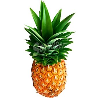 Piña tropical extra 2 kg pieza peso aproximado
