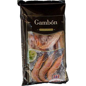 Mofesa Gambon crudo 20-30 piezas bolsa 800 g neto escurrido Bolsa 800 g neto escurrido