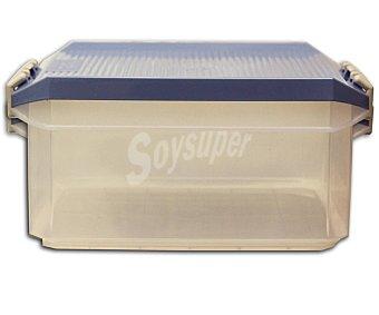 Tatay Caja de ordenación multiusos con tapa de pláctico color azul lavanda, tatay 14 litros