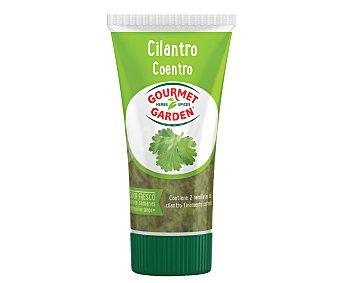 Gourmet Garden Cilantro listo para usar Tubo 80 g