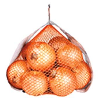 Cebolla Malla 2 Kg