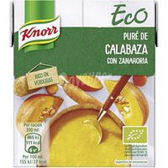 Knorr Crema ecológica de calabaza brik 300 ml
