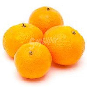 Mandarina ecológica 1 kg