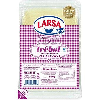 Larsa Queso en lonchas sin lactosa Envase de 120 g