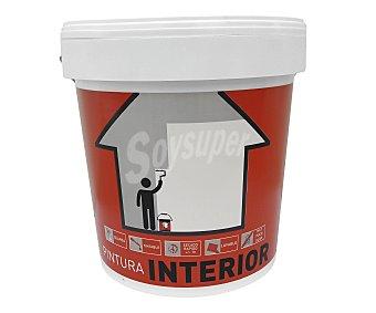 QPDECORS Pintura para interior, de color blanco y con acabado mate 15 litros